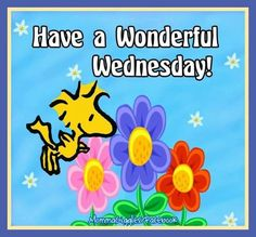 Have a wonderful Wednesday Woodstock Snoopy Quote good morning wednesday hump day… Wednesday Greetings, Wednesday Hump Day, Good Morning Wednesday, Wonderful Wednesday, Good Morning Happy, Good Morning Greetings, Morning Wish, Wednesday Prayer, Monday Morning Quotes