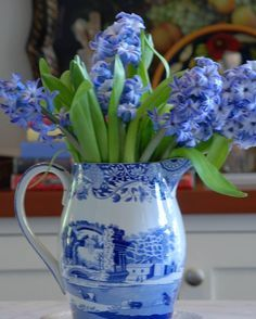 Hyacinths in blue & white transferware pitcher - Nell Hill's