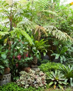 An Eclectic Home in Manila - Bobby Gopiao Philippines Home - ELLE DECOR Even in the heart of the largest city in the Philippines, a landscape architect manages to create his own unique vision of Arcadia Backyard Garden Landscape, Gravel Garden, Small Backyard Gardens, Outdoor Gardens, Modern Gardens, Garden Oasis, Small Gardens, Garden Planters, Tropical Garden Design