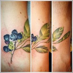 For my love #blueberries thanks to @electraproink for making their fantastic #blueberry colour ! #blueberrytattoo #tattoo #ink #tattoosofdallas #tattoosofdeepellum #deepellum#stephanieadelina #color #colortattoo #tattoos #tattoo #colorwork #colourtattoo #tattoosofinstagram #femaletattooartist #dallas #texas #colourtattoo #tatuaje