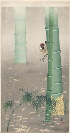 Ohara Koson: Sparrow and Bamboo Stalks - Japanese, Meiji era, beginning of 20th century