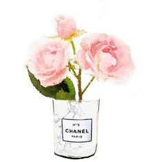White Marble Chanel No 5 Candle Pink Rose Flower Vase Print from... ❤ liked on Polyvore featuring home, home decor, wall art, filler, backgrounds, flowers, pink poster, pink home decor, watercolour painting and rose home decor