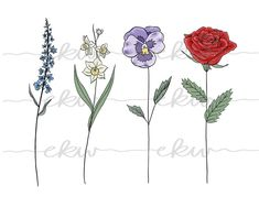 Birth Month Flowers, Follow Me On Instagram, Tatting, Body Art, Tapestry, Black And White, Digital, Party Ideas, Color