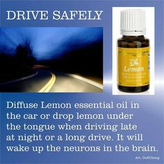 Drive Safely Tip