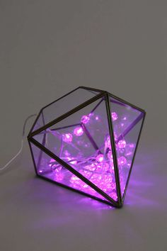 Rosebud String Lights - Urban Outfitters