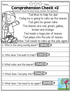 Simple Reading COMPREHENSION Checks for early readers! Great for building fluency, comprehension, supporting text evidence and more!