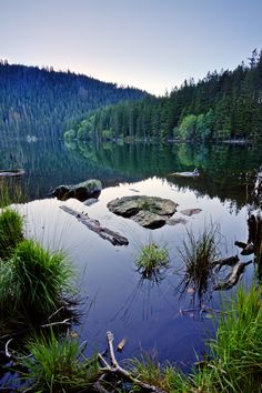 Landscape and nature photography of wilderness in the middle of Europe - Bohemian forest, Prague, Sun And Water, Magical Forest, Czech Republic, Wilderness, Beautiful Places, Scenery, Landscape, Lakes