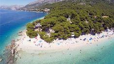 Punta Rata Beach Trips, Beach, Outdoor, Viajes, Outdoors, The Beach, Traveling, Beaches, Outdoor Games
