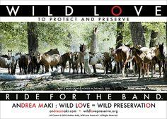 Campaigns — Wild Love Preserve