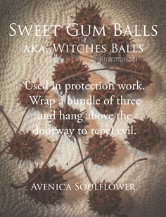 Witches Balls or Gumballs Magick Spells, Witchcraft, Sweet Gum, Which Witch, Eclectic Witch, Kitchen Witch, Book Of Shadows, Spelling, Herbalism