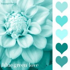color-2.jpg (400×400)