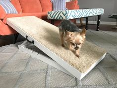 How to Make an Adjustable Dog Ramp DIY Carpentry & Woodworking - Crown Molding, Beadboard, Framing, Tools DIY Deep Cleaning Tips, House Cleaning Tips, Cleaning Hacks, Cleaning Spray, Westies, Dachshunds, Funny Dachshund, Dachshund Puppies, Wood Pavilion