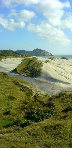 Wharariki Beach, near Cape Farewell, Puponga Farm Park, The South Island, New Zealand
