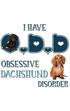 Dachshund Quotes, Dachshund Puppies, Dachshunds, Doggies, Dog Love, Puppy Love, Oscar Mayer, Wiener Dogs, Crockpot Meals
