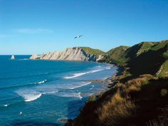 Napier New Zealand | Cape-Kidnappers-in-Hawkes-Bay-New-Zealand.jpg