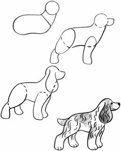 step by step drawing Puppies | Cocker Spaniels are the smallest breed of sporting dog. Besides being ...