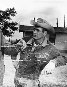 """Paul Newman in his Lee Storm Rider jacket, in the movie """"Hud."""""""