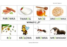 "BLOG EDUKACYJNY DLA DZIECI: WYRAZY Z ""Ó"" Queen Ant, Polish Language, Honey Buns, Ants, Poland, Dog Food Recipes, Internet, Education, Blog"