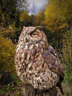 Eagle Owl Sleepy (awesome sculpture) by Simon Griffith