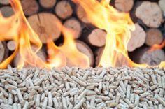 Navarra: El uso de la biomasa forestal para calefacción y usos industriales se ha incrementado un 23% en dos años