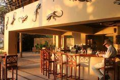 Chobe Safari Lodge   Luxury Travel   Botswana