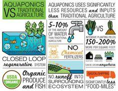 (1) Timeline Photos - Aquaponics Systems