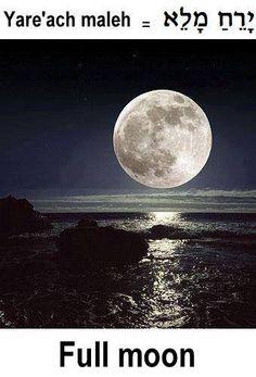 Full moon. Hebrew.