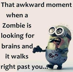 Funny Minion Quote About Zombie vs. Brains - Funny Minion Quote About Zombie vs. Funny Minion Pictures, Funny Minion Memes, Minions Quotes, Funny Images, Silly Pictures, Web Images, Bing Images, Really Funny Memes, Stupid Funny Memes