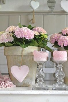pretty in pink~Ana Rosa Pink Hydrangea, Pink Roses, Pink Flowers, Hydrangeas, Potted Flowers, Tea Roses, Estilo Shabby Chic, Vintage Shabby Chic, Decoration Shabby