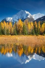 Fall where I live~Alaska