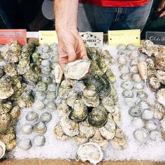 Rochambeau oysters from York River VA has a goldilocks story. Not too mild not too saline...juuust right. Perfect for breakfast! #sena17 #sena2017 #boston #seafoodshow #seafood #oysters #oysterlove @rroysters xoxo INAHALFSHELL.COM