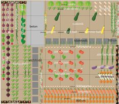 Farm Layout, Companion Planting, Vegetable Garden, Home Projects, Home And Garden, Green, Plants, Outdoor, Gardens