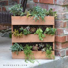 DIY Cedar Pallet Succulent Planter