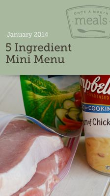 5 Ingredients or Less Mini January 2014 Menu - Once a Month Meals  - Freezer Meals - Budget Friendly