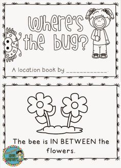 Bugs Galore: Literacy and Numeracy Pack: Miss Jacobs' Little Learners