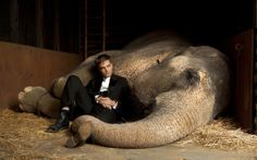 """Robert Pattinson in the Movie """"Water for Elephants"""" (2011)"""