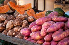 Foods for Estrogen-Receptor-Positive Breast Cancer