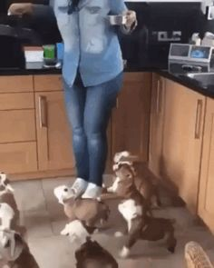 GIF We are very hungry