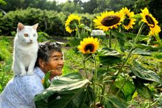 Japanese old woman and her cat
