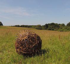 Rachel Carter Sculpture - Landscape and garden sculpture using mild steel and woven willow Willow Sticks, Rachel Carter, Twig Art, Ephemeral Art, Wire Sculptures, Willow Weaving, Weaving Art, Environmental Art, Outdoor Art