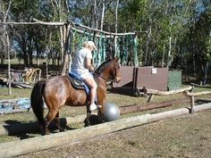 Ball through telephone poles for horse obstacle course Horse Training Tips, Horse Tips, Extreme Trail, Trail Riding, Horse Riding, Horse Arena, Westerns, Horse Exercises, Horse Games