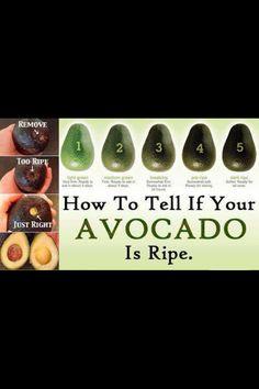 Avocado ready to use