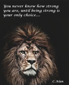 Strong...