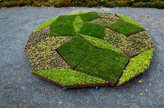 Google Image Result for http://www.v2com.biz/data/post/837-01/th/837-01_23_ph-Fractal_Garden.jpg