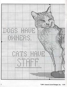 cattitudes ninth litter 11/20