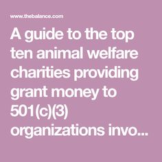 A guide to the top ten animal welfare charities providing grant money to 501(c)(3) organizations involved in pet adoption, animal rescue, and more