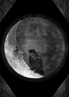 photography Black and White horror moon dark morbid raven darkness Macabre