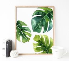 Plants illustration monstera ideas for 2019 Tropical Home Decor, Tropical Decor, Tropical Interior, Tropical Furniture, Tropical Colors, Plant Painting, Plant Art, Plant Illustration, Botanical Illustration