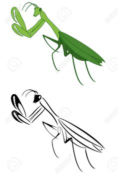 4432722-A-set-of-two-pray-mantis-Stock-Vector-tattoo-tribal-mantis.jpg (867×1300)