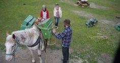 Practising Horse Packing